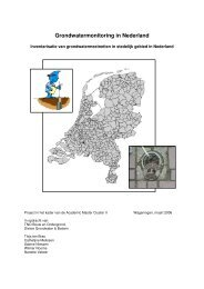 (2006) Grondwatermonitoring in Nederland - Delft Cluster