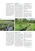 Vuosikertomus 2012 - Kanteleen Voima Oy - Page 5
