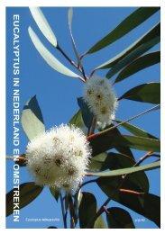 Planten - Eucalyptuskwekerij Koala