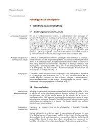 Fastlæggelse af lønbegreber, 2009 - lønkommissionen
