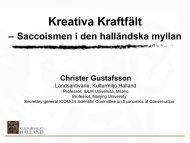 Kreativa kraftfält - Christer Gustafsson.pdf