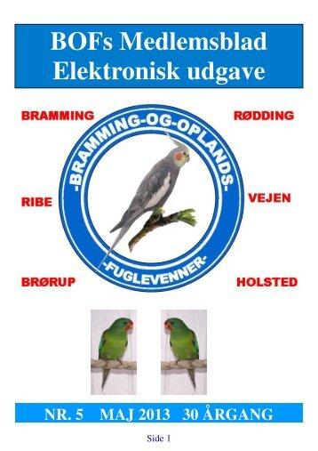 Blad0513 elektronisk.pdf - Bramming og Oplands Fuglevenner