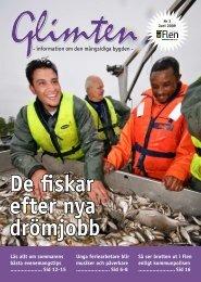 Glimten nr3 2009.pdf - Flens kommun