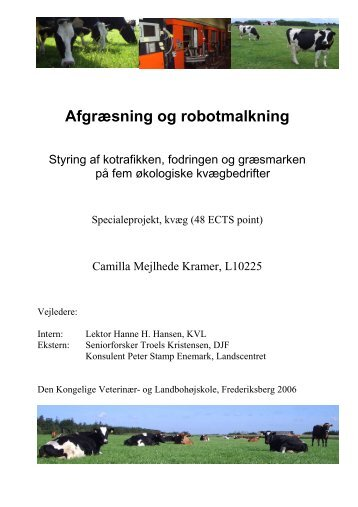 master thesis - Automatic Milking