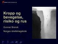 Gunnar Breivik: