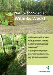Informatieblad Willinks Weust - Natura 2000 beheerplannen