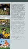 """Radfahren durchs """"Moor ohne Grenzen"""" - Naturpark Bourtanger Moor - Seite 4"""