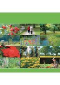 Gesundes Grün - Die grüne Stadt - Page 3