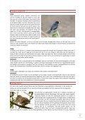 Nieuwsbrief 3, jaargang 1 - Ivn - Page 2