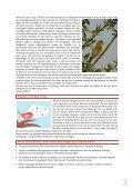Nieuwsbrief 3, jaargang 1 - Ivn - Page 3