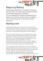 Bagua og Nyborg Nyborg-case
