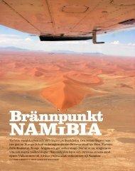 Vagabond Namibia - Trackers