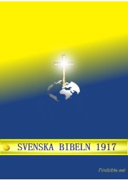 Svenska Bibeln 1917 - findbible.net