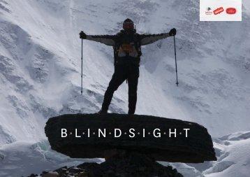 blindsight (pdf)