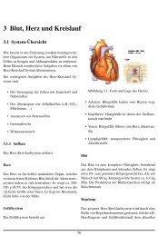 3 Blut, Herz und Kreislauf