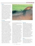 Staart- en maneneczeem - Dierenartsenpraktijk Moergestel - Page 3