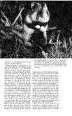 verenigings - Zoogdierwinkel - Page 5
