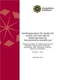 Handlingsprogram för skydd mot olyckor som kan leda till ...