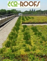 Eco-Roofs Brochure and Specifications PDF - Eco-Roofs Green ...