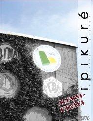Alumnitidning 07/08 - Industriell ekonomi, Linköping