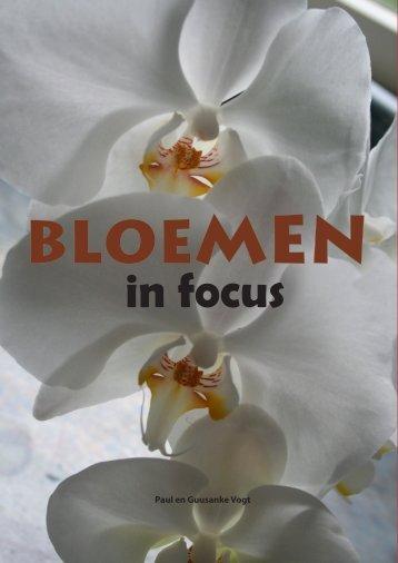Bloemen in focus - paulvogt
