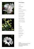 Bloemen in focus - paulvogt - Page 3