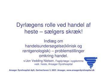 Handelsundersøgelse problemstillinger.pdf - Ansager Dyrehospital ...