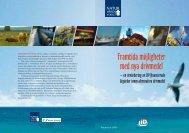 Framtida möjligheter med nya drivmedel – en utvärdering av LIP ...