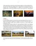 Når gnuer og zebraer føder på Serengeti - Søren Ervig - Page 5
