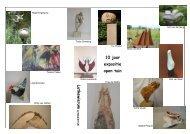 2 pagina's met gegevens over de kunstenaars en ... - Lytsewierrum.nl