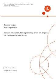 Det danske naturgasmarked