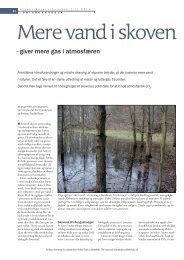 Mere vand i skoven - Aktuel Naturvidenskab