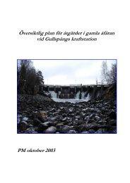 Översiktlig plan för åtgärder