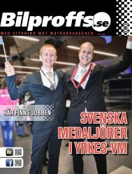 yrkeS-vm 2011 - Bilproffs