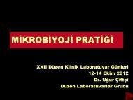 Mikrobiyoloji Pratiği - Düzen Laboratuvarlar Grubu