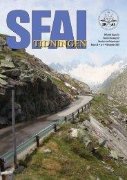 2010 Vol. 16 Nr 4 - SFAI