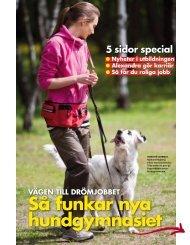 Så funkar nya hundgymnasiet - vägen till drömjobbet - Hans Karlsson