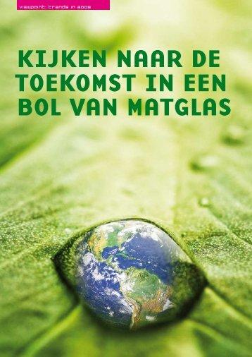 KijKen naar de toeKomst in een bol van matglas - Guus Pijpers