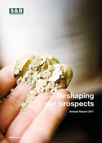 2011 Annual Report - S&B