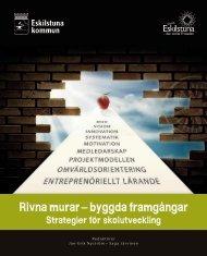 Länk till boken Rivna murar – byggda framgångar. Strategier för ...