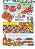 DE TOMAAT - Het Kleine Loo - Page 4
