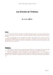 Les Grenats du Massif de l'Arbizon - Page perso minéraux Alain ...