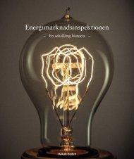 Boken Energimarknadsinspektionen - en sekellång historia i pdf ...