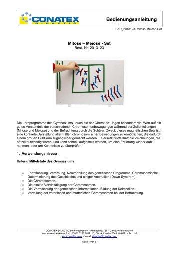 Zellteilung MITOSE & MEIOSE