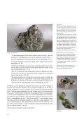 Een brochure met veel achtergrondinformatie (pdf ... - Bimsem.net - Page 6
