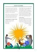 SOLEN OG HUDEN - Experimentarium - Page 7