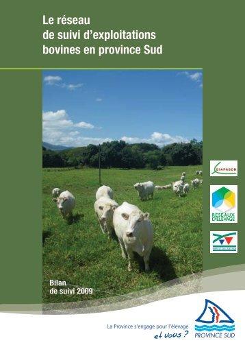 Téléchargez la brochure (1.96 Mb) - Province sud