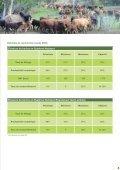 Téléchargez la brochure (1.96 Mb) - Province sud - Page 5