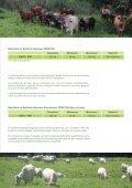 Téléchargez la brochure (1.96 Mb) - Province sud - Page 7