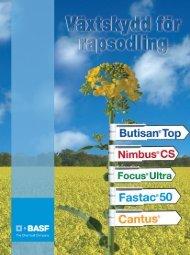 Ladda ner som PDF - BASF